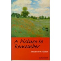 A Picture to Remember: Book