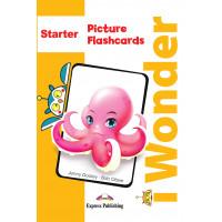 iWonder Starter Picture & Word Flashcards