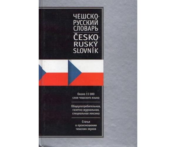 Russko-cheshskij, cheshsko-russkij slovar