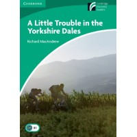 A Little Trouble in the Yorkshire Dales: Book
