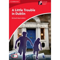 A Little Trouble in Dublin: Book