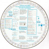 Anglų kalbos diskas